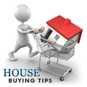 Buying Real Estate Guidelines